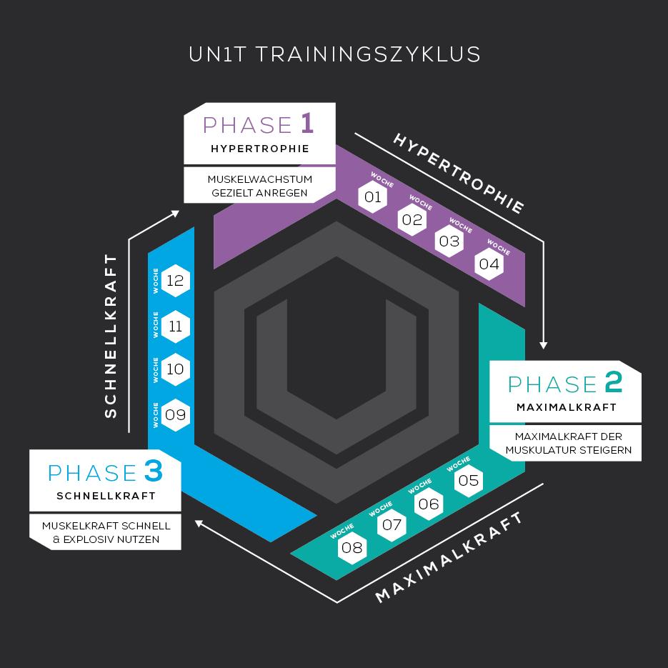 Optimal fit werden: Der UN1T Trainingszyklus